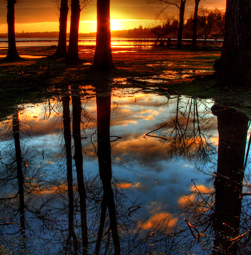 Puddle Clouds by Joe Sullivan